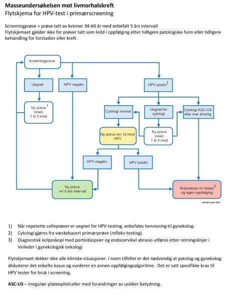 HPV primary screening algorithm